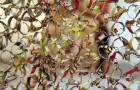 At the Brooklyn Museum, the Wonderful World of El Anatsui