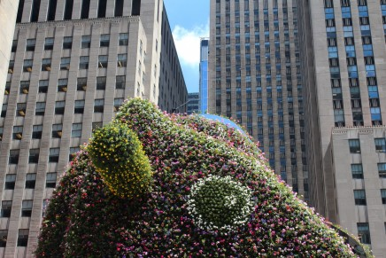 Summer in New York: 5 Must-See Public Art Works